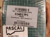 PASCAL G1W017PC