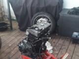 SC33 Honda cbr 919rr