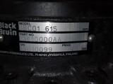 Black Bruin  BBC01