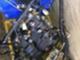 monkeytype-140cc-160cc-
