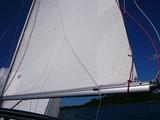 North Sail isopurje