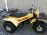 Yamaha Tri-moto 175
