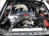 Ford 5.0 MPFI e85