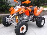 Bashan  Bs300 cross