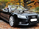 Audi OEM