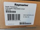Raymarinen P79 A80170