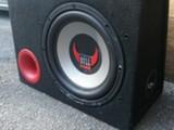 Bull audio 12