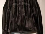 Harley Davidson Miss enhusiast
